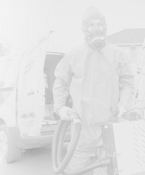 Asbestos Survey Consultant in London