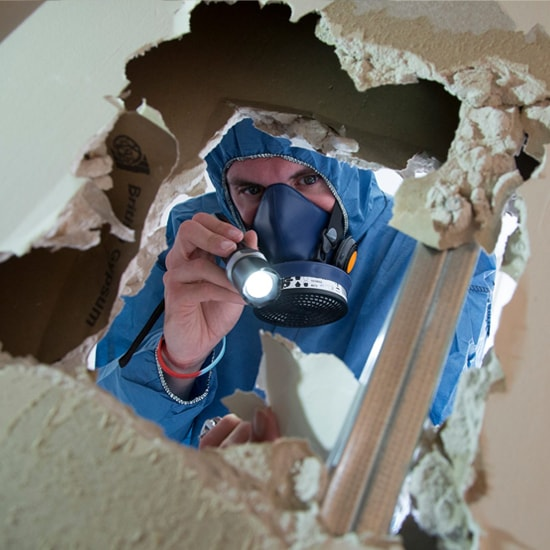 Asbestos Testing and Sample Collection
