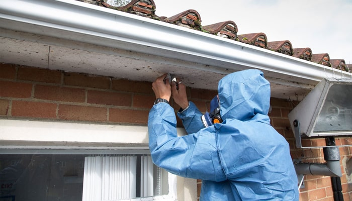 Should you get an asbestos survey when buying a house blog image