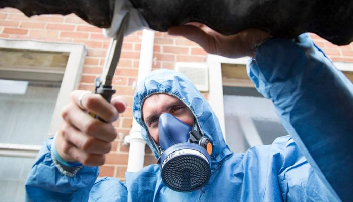 How Much Does An Asbestos Survey Cost? - Asbestos Consultant in Bristol